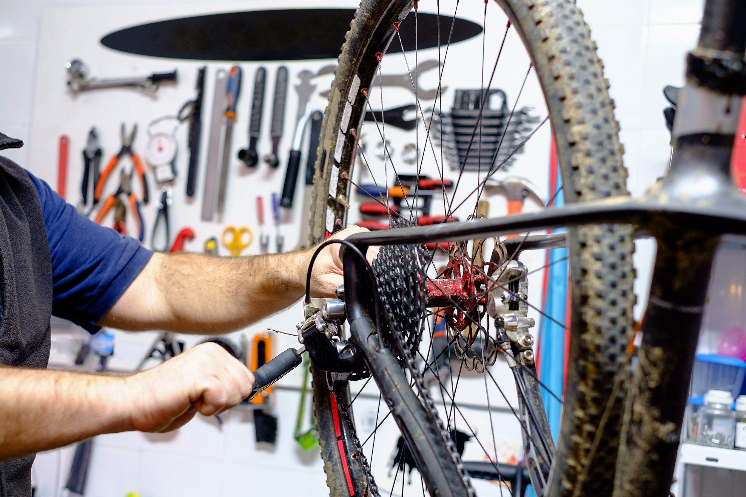 Bicycle Service and Repairs